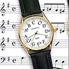 Chromatic Scale Watch
