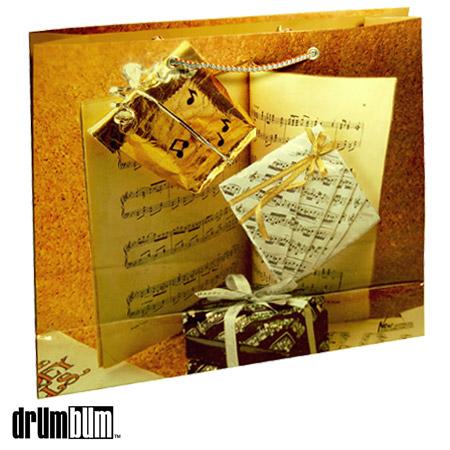 g-06-music-notes-gift-bag.jpg