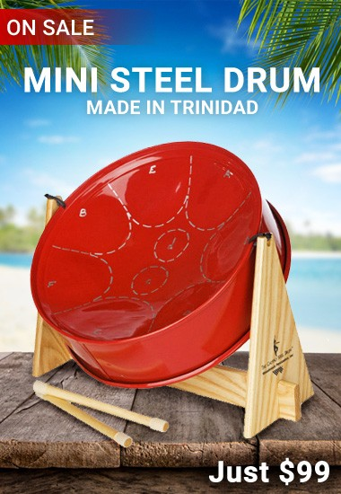 Mini Steel Drum from DrumBum.com
