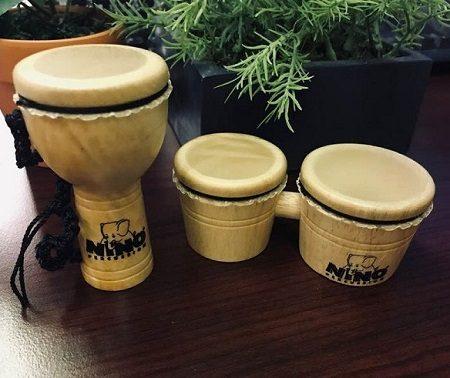djembe drum bongo drums
